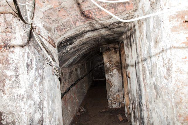 Rose & Crown cellars 4 | Roger Rawson