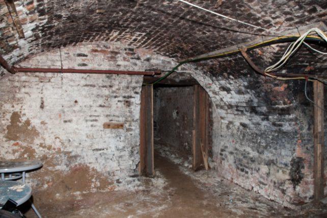 Rose & Crown cellars 5 | Roger Rawson