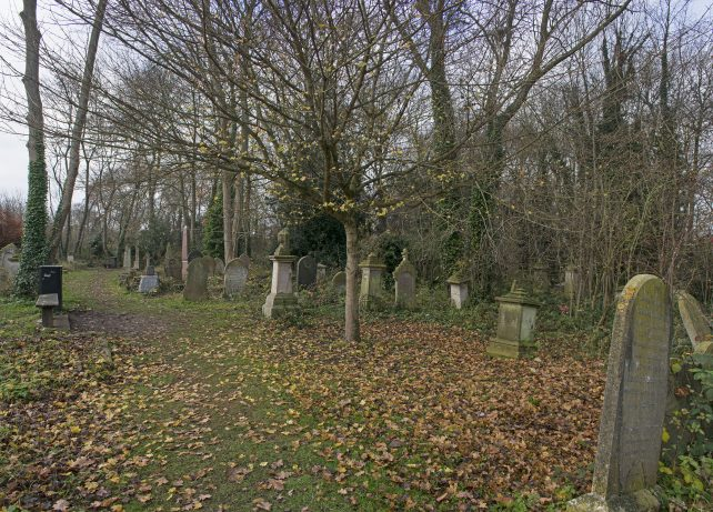 Cemetery panorama | Mike Forrest