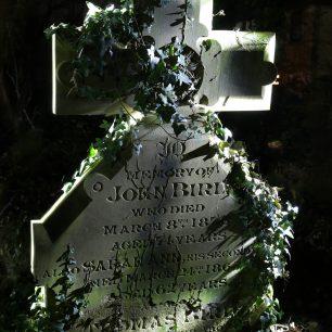 Cemetery 3 | Gary Garford